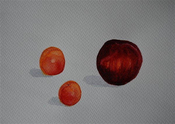 tihižitje, akvarel, 2016